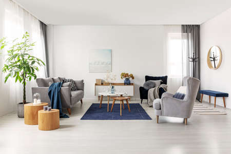 Spacious grey and navy blue scandinavian living room interior