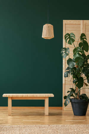 Wooden stool next to plant in green natural living room interior with lamp and rug. Real photo