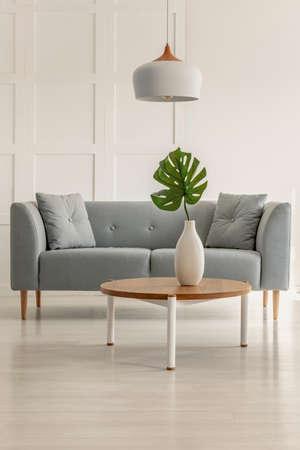 Echtes Foto eines grauen Sofas und Couchtisches mit einer Monstera deliciosa in einem Wohnzimmerinnenraum Standard-Bild