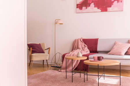 Lamp between armchair and sofa with pink and red blanket in flat interior with tables. Real photo Stock Photo