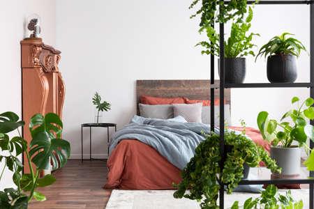 Beaucoup de plantes dans une chambre minimaliste naturelle avec des draps corail et bleu clair Banque d'images