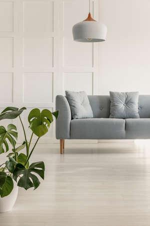 Gray comfortable sofa in stylish living room Stockfoto - 121512738