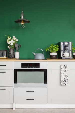 Roses in vase, herbs in pot and coffee maker on kitchen counter
