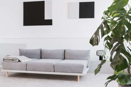 Abstract geometric black and grey paintings on white wall of trendy living room interior