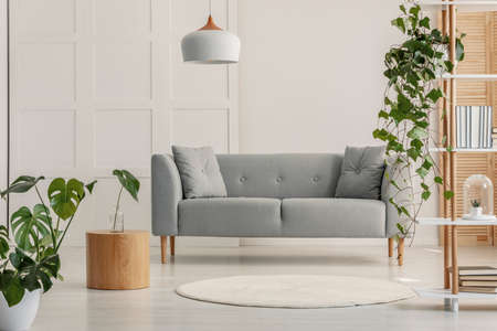 Modern living room interior with gray sofa and wooden coffee table Stockfoto - 123454316