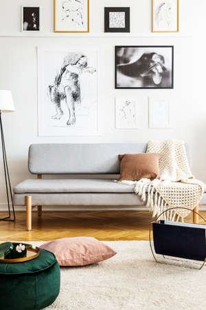 Posters above grey sofa in white living room interior with pillow and pouf on carpet. Real photo