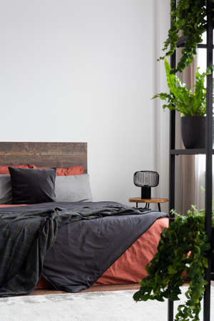 White bedroom with plants, coral and grey bedding and empty wall