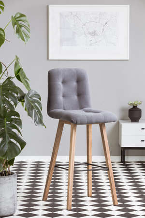 Grey velvet chair in fashionable living rom interior with green plant and black and white floor Stok Fotoğraf - 125589113