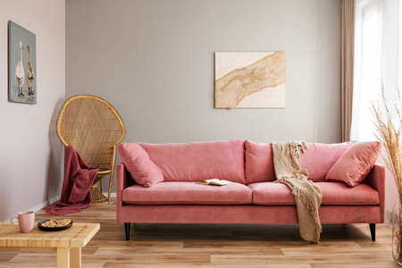Wicker peacock chair with red blanket behind pink velvet couch 免版税图像 - 126441657