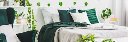 Panoramic view of white and green bedroom with king size bed
