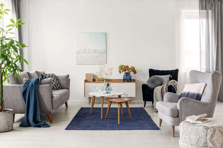 Elegant white, grey and blue living room interior with scandinavian sofa and velvet armchair Stok Fotoğraf - 126997147