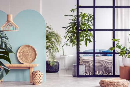 Urban jungle in bright white and blue bedroom interior with partition Archivio Fotografico