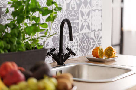 Closeup of kitchen sink and herbs and fruit on counter