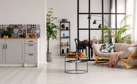 White and black minimal kitchen interior with bog plant in pot and things on coffee table