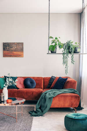 Green flowers on stylish swing in classy living room interior with corner sofa with pillows