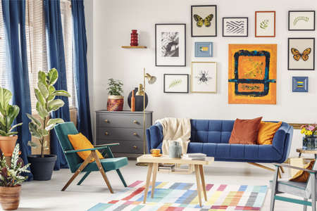 Simple posters hanging on the wall in bright living room interior with blue curtains, coffee table placed on colorful carpet, green armchair and navy couch