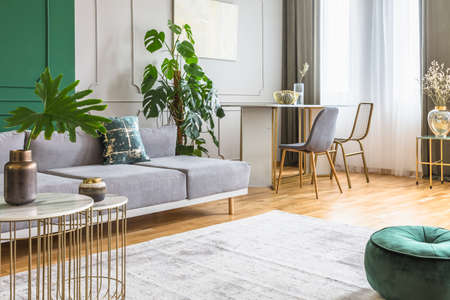 Living and dining room interior in bright apartment, real photo