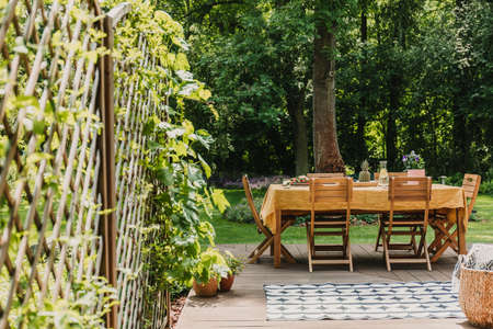 Dining table covered with orange tablecloth standing on wooden terrace in green garden 스톡 콘텐츠