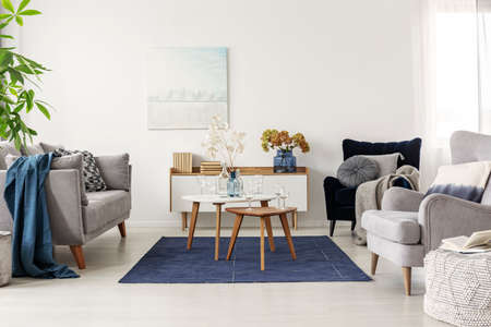 Elegant white, grey and blue living room interior with scandinavian sofa and velvet armchair Stok Fotoğraf - 129347890