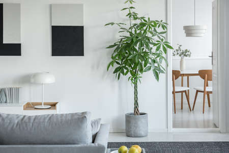White industrial lamp on console table in bright living room interior with plants and grey comfortable sofa