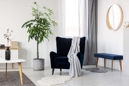 Dark blue velvet wing back chair with grey blanket in trendy living room 版權商用圖片 - 130624851