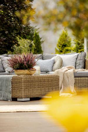 Rosa Heidekraut auf einem Couchtisch auf einer modern gestalteten Terrasse