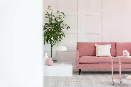 Big green plant in pot next to pastel pink sofa in white elegant interior