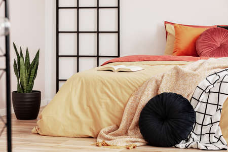 Green plant in black pot next to king size bed in trendy bedroom interior Stok Fotoğraf
