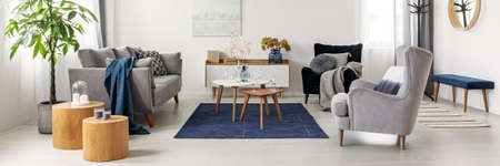 Elegant white, grey and blue living room interior with scandinavian sofa and velvet armchair