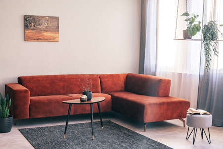 Real photo of a red, suede sofa standing in the corner of a bright living room interior with plants on a swing 版權商用圖片