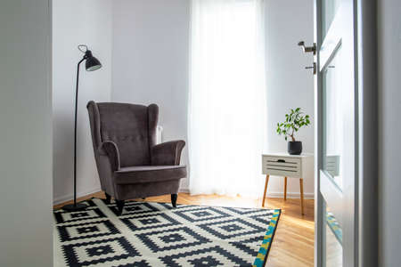 Trendy grey wing back chair in small room with stylish black and white rug and plant in pot on small table