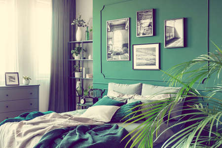 Stylish bedroom interior with double bed and emerald green wall Zdjęcie Seryjne