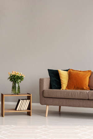 Vintage style grey living room interior with trendy sofa