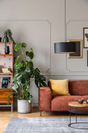 Tall green monster plant in concrete pot next between vintage bookshelf and brown sofa