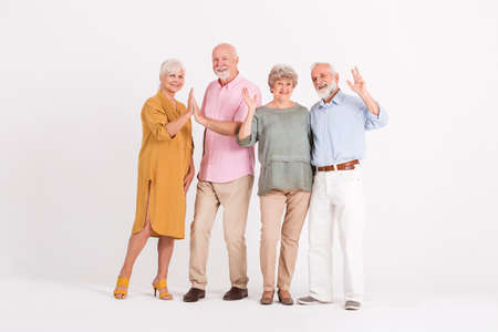 Group of for elegant senior happy people in white interior