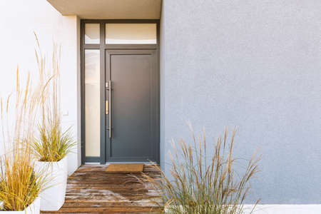 Grass in pot and wooden path in front of front door stylish suburban house