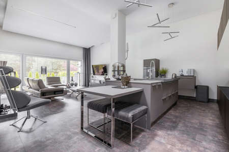 Open space living room and kitchen in glamor family house