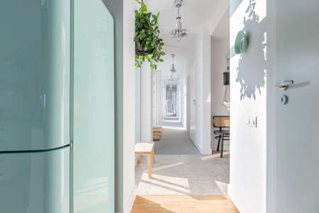 Long white corridor with modern lightning, wooden furniture, green plant and armchair