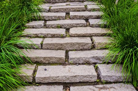 grasses beside of the stone steps Stok Fotoğraf