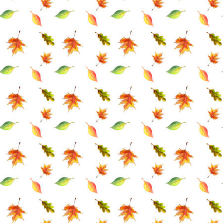 Seamless pattern watercolor foliage on white background.