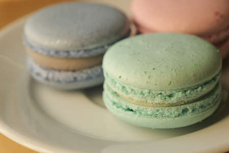 Closeup macro shot of french macarons in pastel colors in white plate on wooden table