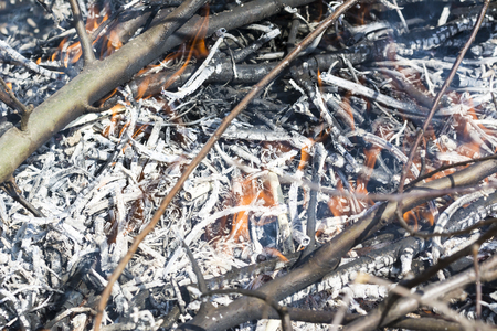 Bush on fire outdoor. Burning dry grass. Fire and smoke. background conceptual Dangerous fires and smokes Stock Photo - 126904501