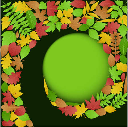 Green background with spiral pattern made up of colorful autumn leaves Stock Vector - 8164163