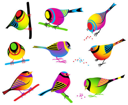 birds on branch: Collection of nine colorful birds Illustration