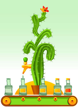 Abstract illustration of tequila production line. It is stereotypically believed that tequila is produced from cactus juice. However, this is a common misunderstanding, and in reality tequila is made from the blue agave plant (unrelated to cacti)
