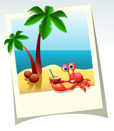 cangrejo caricatura: Tiro de verano de dibujos animados de mar, palmeras y cangrejo con coco c�ctel