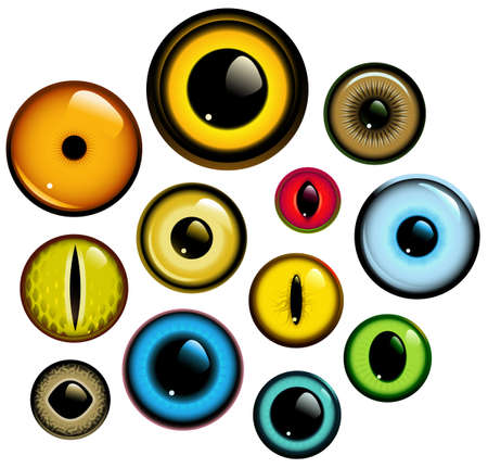 Vector collection of human and animal eyes Illustration