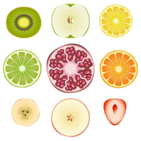lemon lime: Raccolta delle fette di frutta fresca Vettoriali