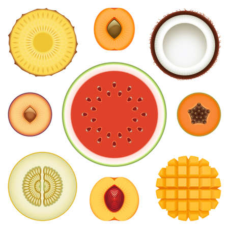 Collection of fresh fruit halves Vector