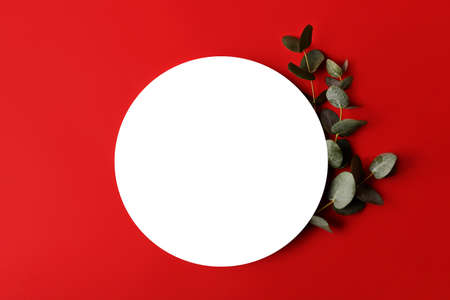 Red minimal background with isolated place for text.Fresh eucalyptus branch near it.Good for placing text or logo.Copy space for design.Border arrangement. 版權商用圖片